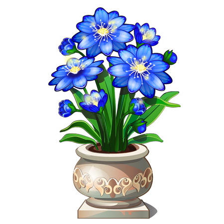 fertilizers: Bright blue flowers in beautiful ceramic pot, vector isolated