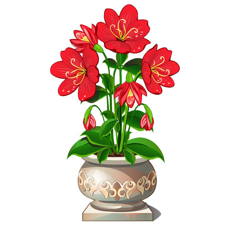 Bright red flowers in beautiful ceramic pot, vector isolated