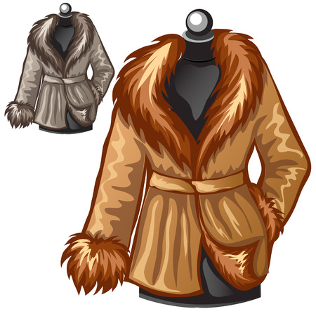 Womens brown winter coat with fur collar. Vector illustration. Clothing isolated