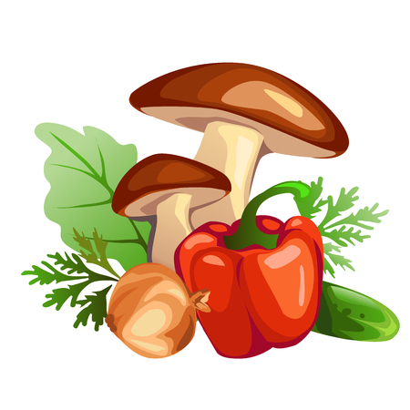 Collection of vegetables, mushrooms, sweet peppers, onion, cucumber and salad on a white background