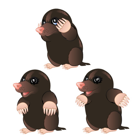animal mole: Mole animal character with different emotions on a white background. Vector illustration Illustration