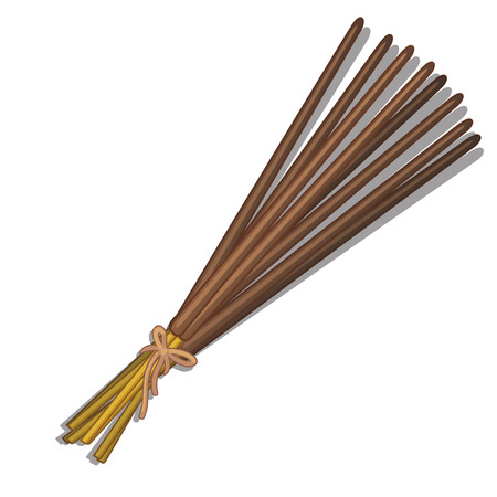 Bunch of incense sticks closeup on white background. vector illustration