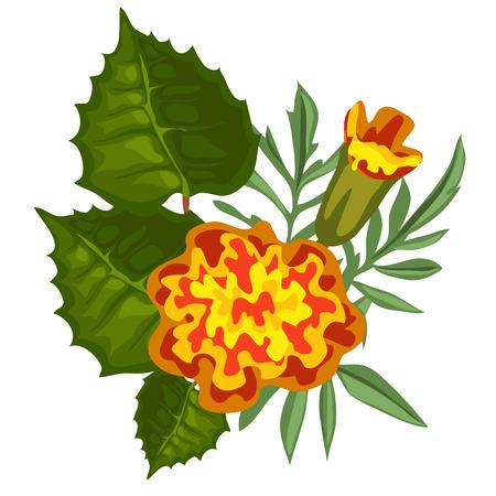 Yellow flower in cartoon style on white background. Vector illustration Illustration