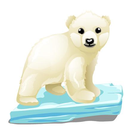 Piccolo orso polare su un galleggiante di ghiaccio, animale vettoriale isolato