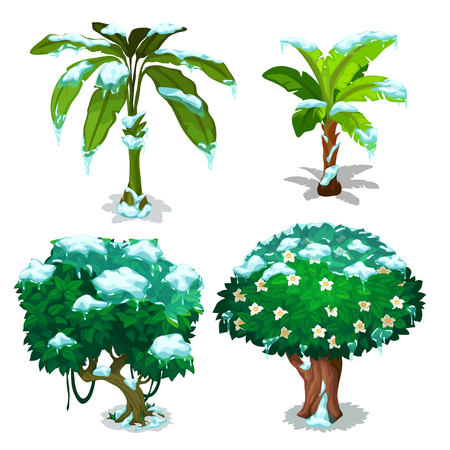 Four different trees with green leaves under snow flakes. Vector illustration on white background