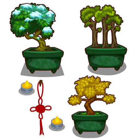 Three little tree bonsai, candles and decoration, vector set on white background
