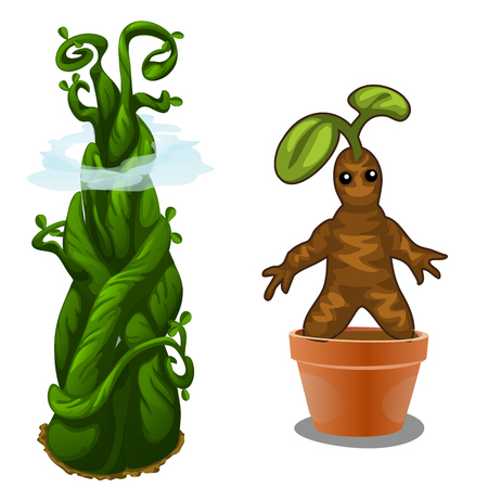 Aquatic and terrestrial plant magic. Vector isolated on a white background. Illustration for your design needs