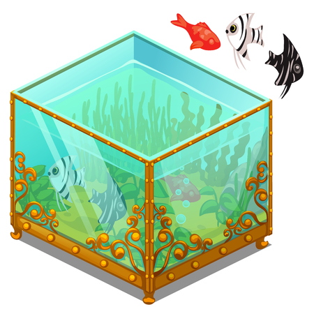 Aquarium with Golden patterns and exotic fish. Vector illustration on white background Illustration