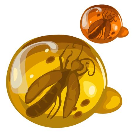 Ancient insect frozen in amber, rare decoration Illustration
