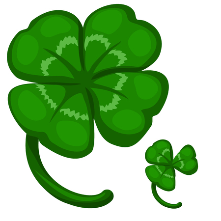 threeleaf: Green leaf clover, symbol of success and good luck. Vector image on white background. Isolated illustration for your design needs Stock Photo