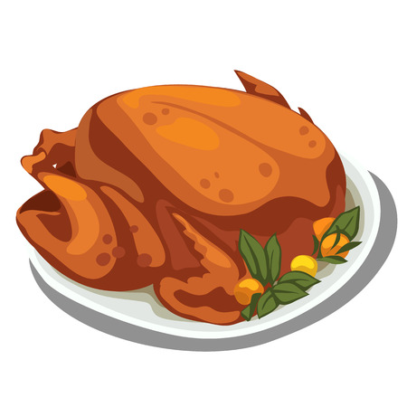 food plate: Cooked delicious chicken on the plate. Vector food