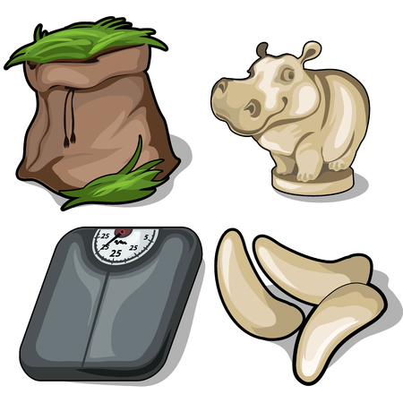 Hay, hippo, scale and fang. Animals diet concept