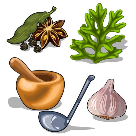 Spices and utensils for cooking. Vector isolated