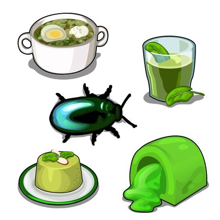 Scarab and set of food. Vector set isolated Illustration