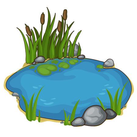 Małe jezioro z trzcinami. Wektor w stylu cartoon