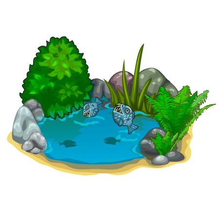 Pond with predatory piranhas, plants and stones