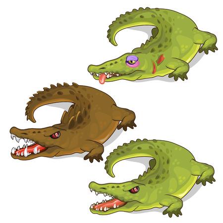 Aggressive crocodiles and crocodile with a bruise. Illustration