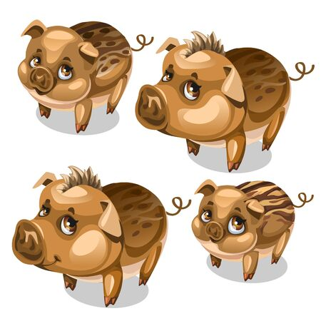 A Vector set of cute pigs with brown eyes isolated
