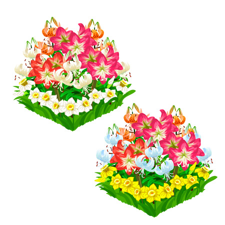 Two beautiful flower beds. Vector isolated Ilustrace