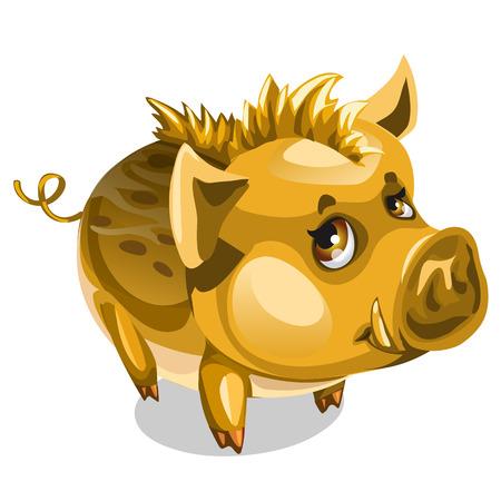Cute little Golden boar. Vector animal isolated