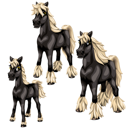 Cartoon black horses with blonde mane on white background. Vector animals isolated for animation, childrens prints and other design needs