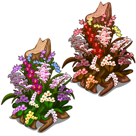 Two old stump overgrown with colourful wild flowers. Image in cartoon style on white background. Concept of decorating for your design needs. Illustration isolated