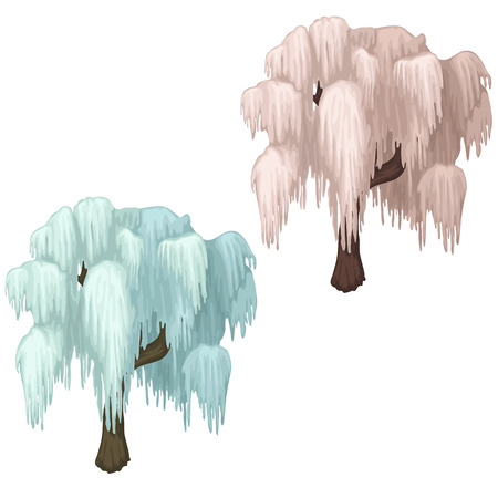 Weeping willow covered with ice. Concept of tree in winter season. Image in cartoon style on white background. Illustration isolated