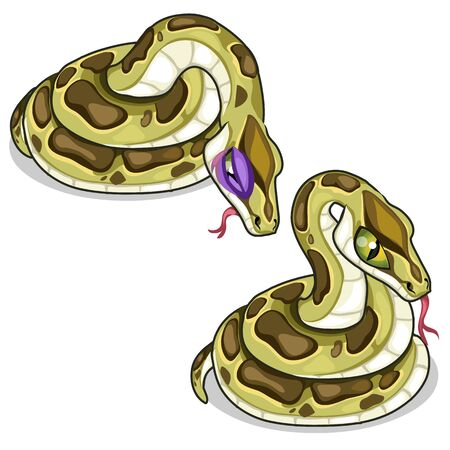 Set of two mesh pythons, one evil, another sick Illustration