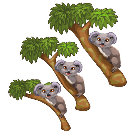 Funny koals rest on trees. Vector animals for animation, childrens prints, holiday symbol and other design needs. Image in cartoon style isolated on white background Vektorové ilustrace