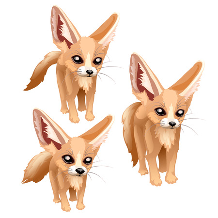 Three standing sandy foxes of different sizes. Vector animal isolated for animation, childrens prints and other design needs