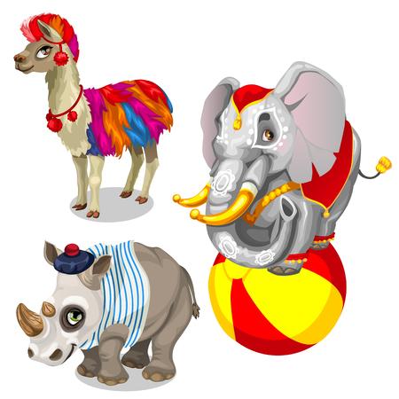 earrings: Animals from circus, llama, elephant, rhinoceros