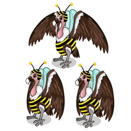 Set of three vultures in bee costume. Vector birds Illustration