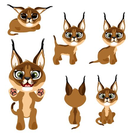 Cartoon brown kitten or lynx in different poses.