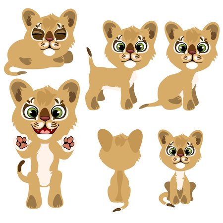 Ginger kitty in different poses. Vector illustration in cartoon style on white background for animation, games, veterinary projects, childrens books and other design needs