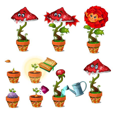 Ripening of friendly red magic flower with human face and toothy carnivorous mushroom. Big vector set of cartoon image isolated on white background Illustration