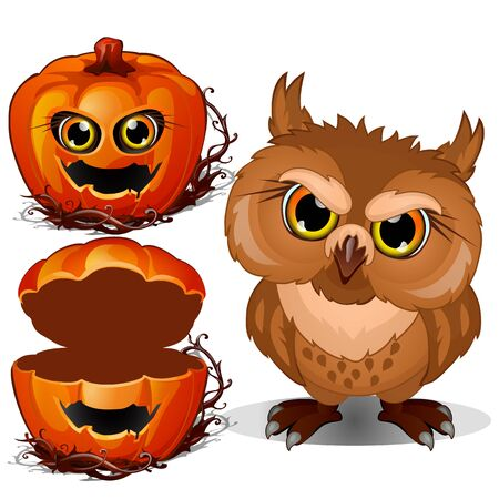 Angry owl and Halloween scary pumpkin face. Vector illustration in cartoon style isolated on a white background Illustration