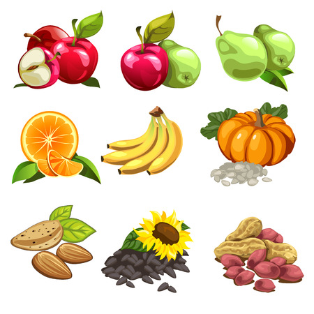 apples and oranges: Fruits, vegetables, nuts, sunflowers seeds. apples, pears, oranges, bananas, pumpkin. Big vector set of nine icons for culinary design projects. Illustration isolated on white background Illustration