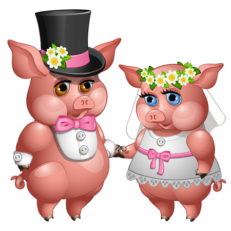 Marriage of bride and groom pigs in wedding suits. Cartoon animals character for animation, childrens illustrations, book and other design needs. Vector isolated on white background Ilustração