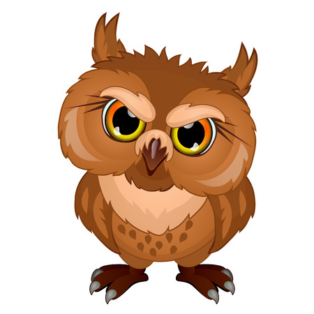 Cartoon owl in evil mood, emotional bird character isolated on white background