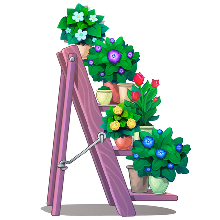 Set of decorative plants in pots on stairs shelves. Vector Illustration flowers in cartoon style isolated on white background