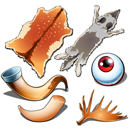 Jagdtrophäen, Tierhäute, Musikhorn, Augen, Hirschgeweih. Natürliches Set von sechs Ikonen getrennt auf weißem Hintergrund. Vektorillustration in der Karikaturart Standard-Bild - 88218962