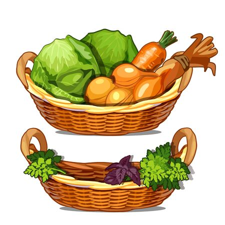 Two baskets with herbs, onions, carrots, cabbage. Vector illustration of vegetables in cartoon style isolated on white background
