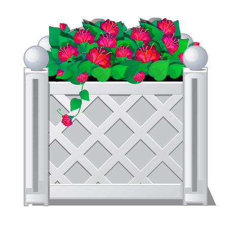 Decorative fence with red flowers. Vector illustration. 向量圖像
