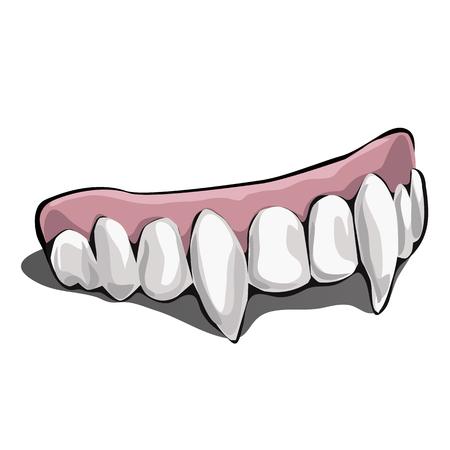 Vampire teeth on white background. Vector illustration. Illustration