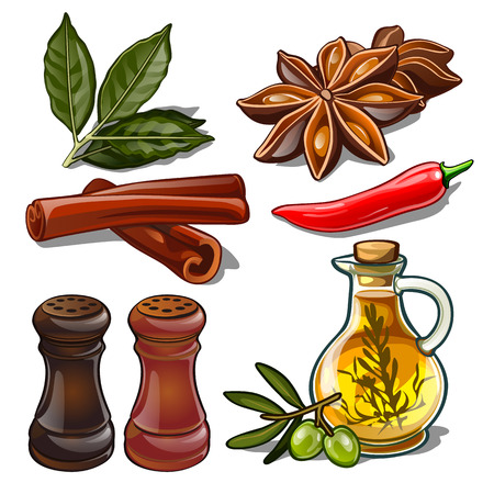 Set of spices isolated on white background. Image of ingredients for a cookbook. Vector illustration.