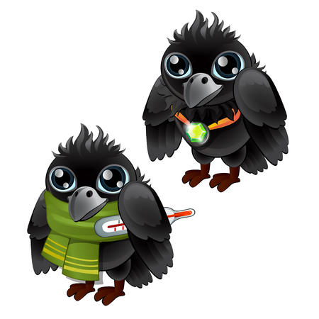 Healthy and diseased jackdaw isolated on white background. Vector cartoon close-up illustration.