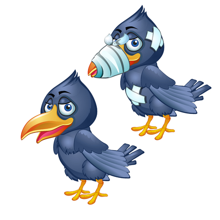 Healthy and diseased crow isolated on a white background. Vector cartoon close-up illustration.