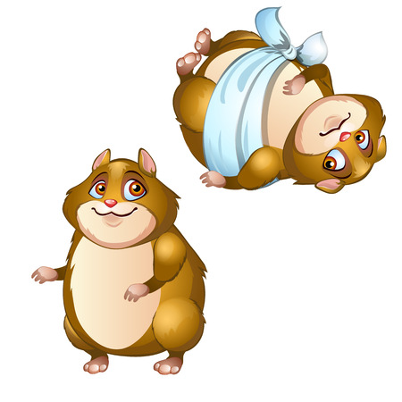 Healthy and diseased hamster isolated on a white background. Vector cartoon close-up illustration. 일러스트