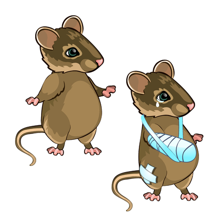Healthy and diseased mouse isolated on white background. Vector cartoon close-up illustration. Vector Illustration