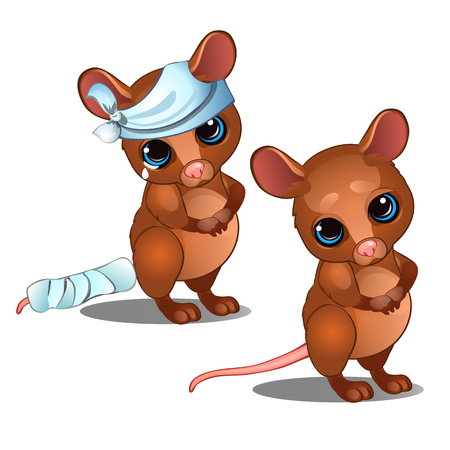 Healthy and diseased mouse isolated on white background. Vector cartoon close-up illustration.